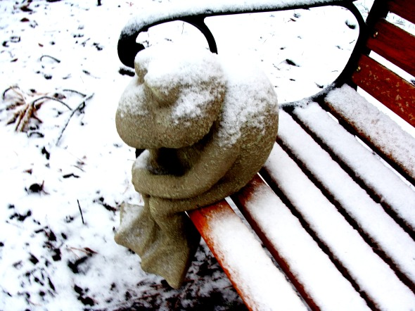 froggy-in-the-snow