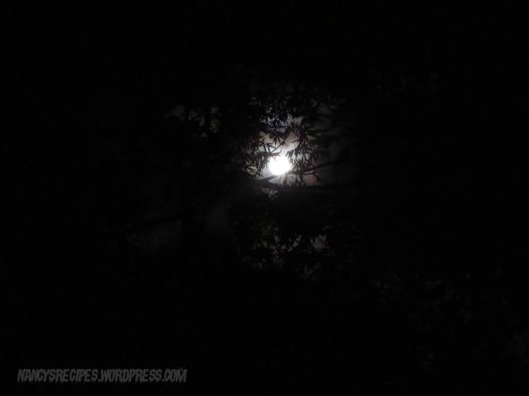 Halloween 2009 Moon