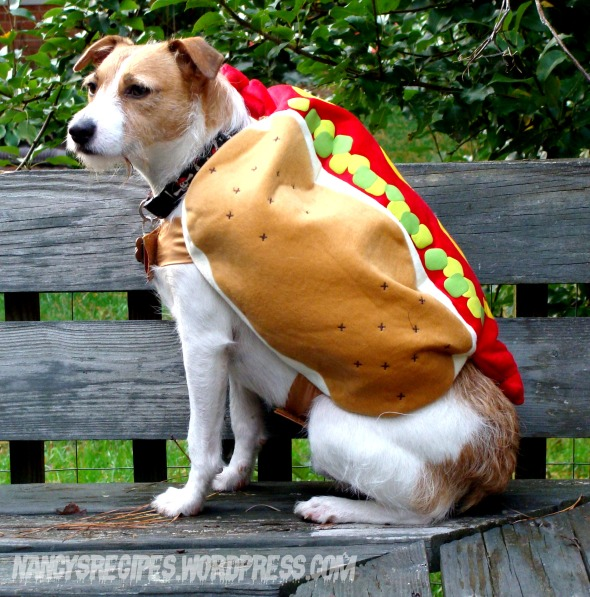 Halloween 2009 Zippy Hot Dog
