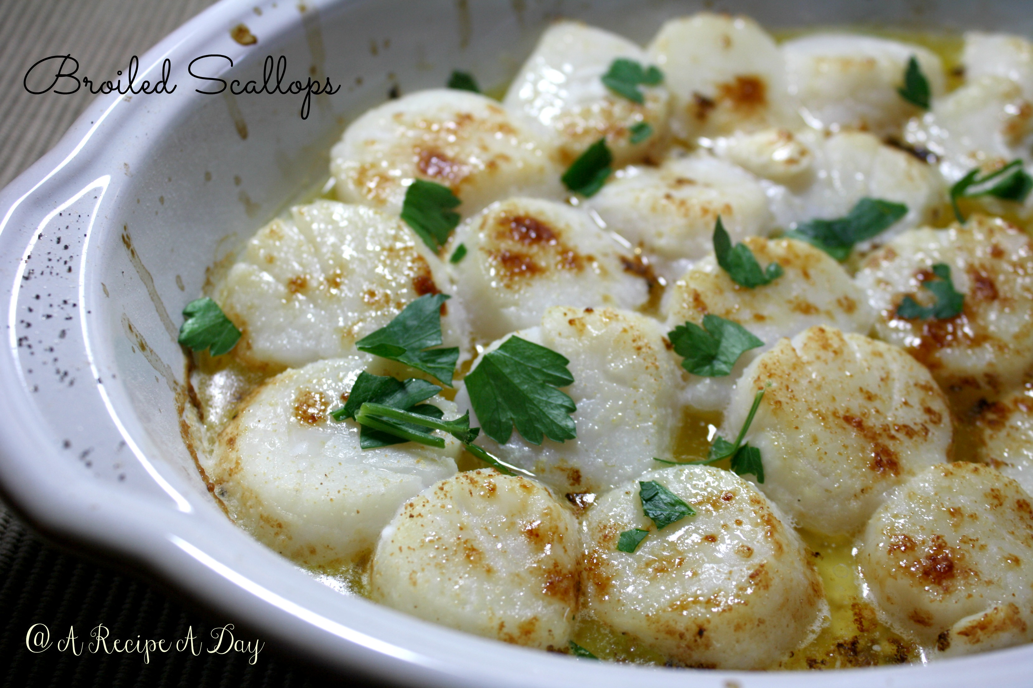 Broiled Scallops 1